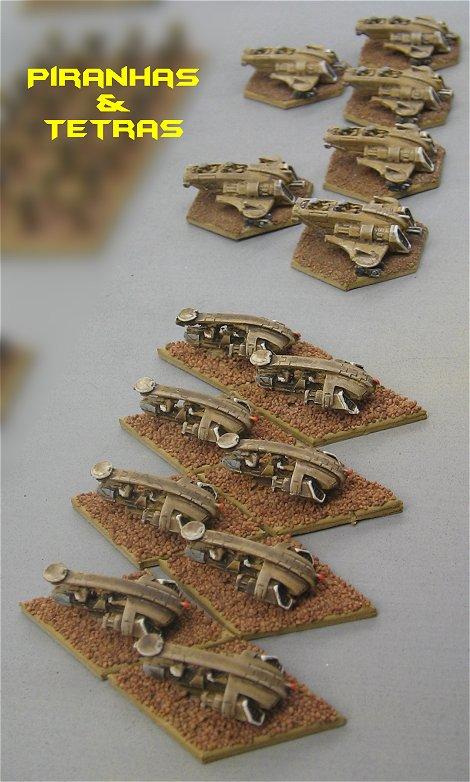 tetras-piranhas