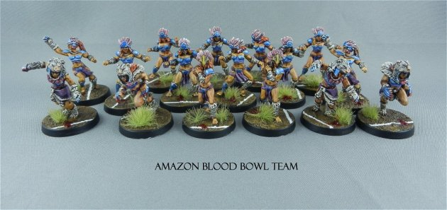 Amazon Blood Bowl team