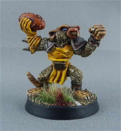 Skaven Blood Bowl team 6